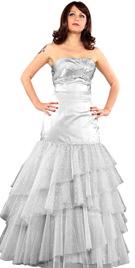 New Net Ruffled Ball Gown